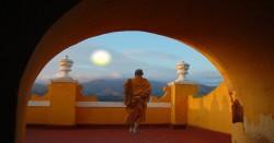 buddhafeat